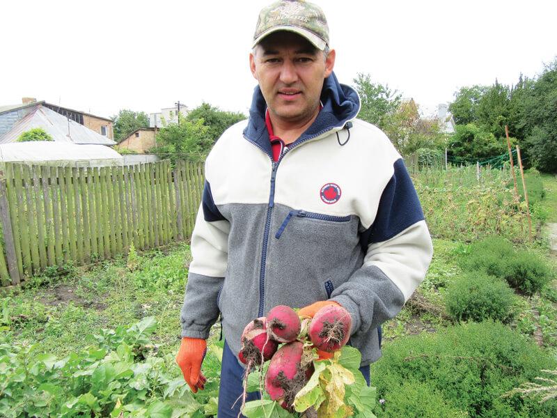 quality-seeds-ukraine