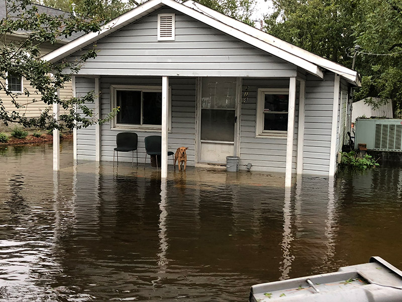 North Carolina home flooded by Hurricane Florence.