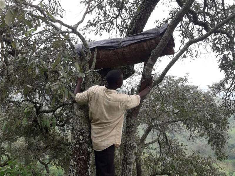 beekeeping project, Christian Aid Ministries
