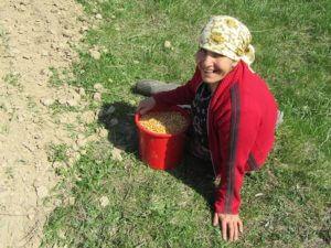 Romanian gypsy, Christian Aid Ministries